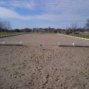 All-weather dressage arenas